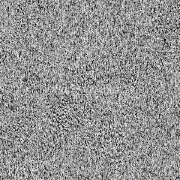 Ταπετσαρία Τοίχου Africa-Queen-Ii-422320