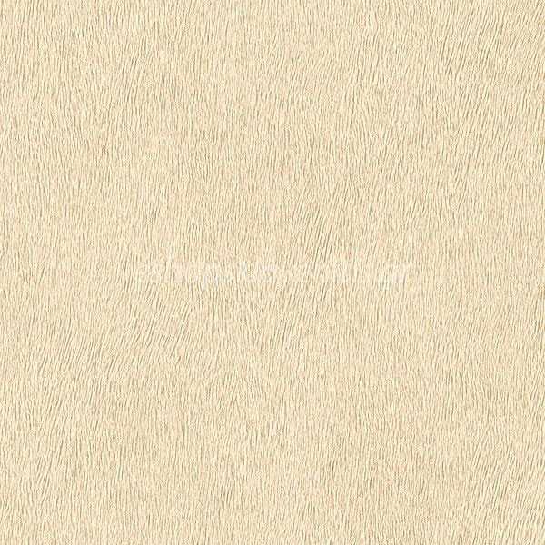Ταπετσαρία Τοίχου Africa-Queen-Ii-422368